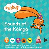 Sounds of the Kāinga (Home) (Laugh, Sing, Learn the Sounds of the Home + Lots of Te Reo Māori Words!) by Eardrops