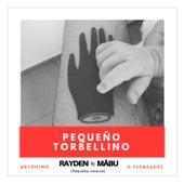 Pequeño torbellino (pequeña versión) [feat. Mäbu] de Rayden