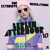 Berlin Afterhour, Vol. 10 (From Minimal to Techno / From Electro to House) by Various Artists