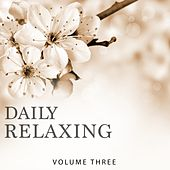 Daily Relaxing, Vol. 3 (Chill Out For Your Relaxation Moment) by Various Artists