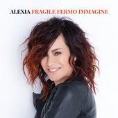 Fragile Fermo Immagine by Alexia