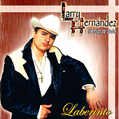 Laberinto by Larry Hernández