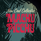 Machu Picchu by New Cool Collective