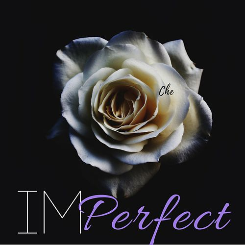 Imperfect by Che