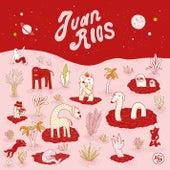 Ko-Op 1 by Juan Rios