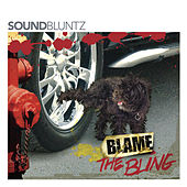 Blame the Bling by Soundbluntz