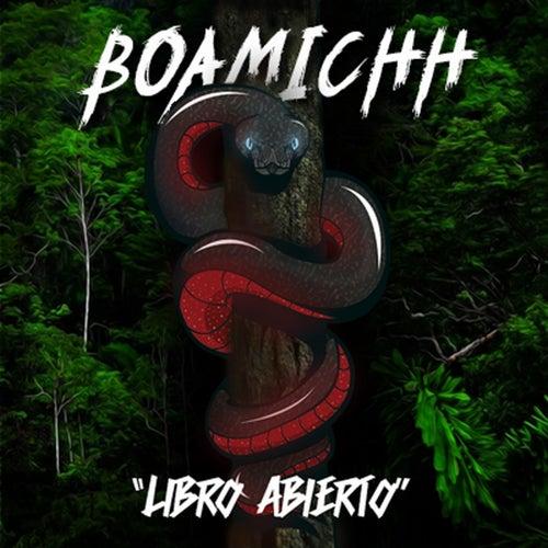 Libro Abierto by BoA
