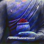 Grand Natural Sound by Rain Sounds (2)