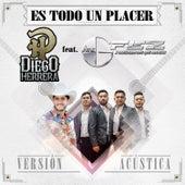 Es Todo un Placer (Versión Acústica) by Diego Herrera