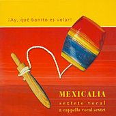 ¡Ay, Qué Bonito Es Volar! by Mexicalia