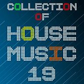 Collection of House Music, Vol. 19 by Various Artists