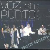 Voz en Punto, en Vivo by Voz en Punto