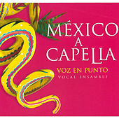 México a Capella by Voz en Punto