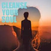 Cleanse Your Soul von Various Artists
