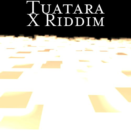 X Riddim by Tuatara