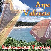 Instrumental Tropical by Arpa Vallenata