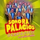 Despacito (Versión Cumbia) by Sonora Palacios