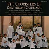 The Choristers of Canterbury Cathedral by Michael Harris