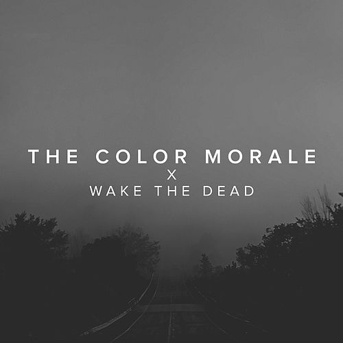 Wake The Dead by The Color Morale