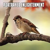 Portrayed Enlightenment by Sounds of Nature Relaxation
