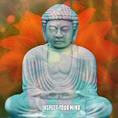 Inspect Your Mind by Asian Traditional Music