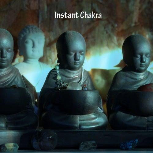 Instant Chakra de Meditation Music Zone