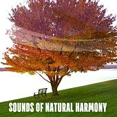 Sounds Of Natural Harmony by Sounds of Nature Relaxation