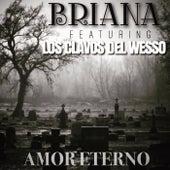 Amor Eterno (feat. Los Clavos del Wesso) by Briana