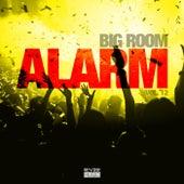 Big Room Alarm, Vol. 12 by Various Artists