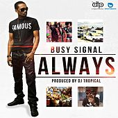 Always by Busy Signal