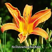 No Distraction Bed Rest by Nature Sounds Nature Music