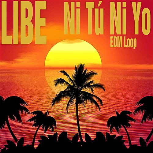 Ni Tú Ni Yo (EDM Loop) by Libe