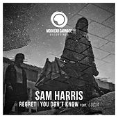 Regret / You Don't Know feat. Lucia by Sam Harris