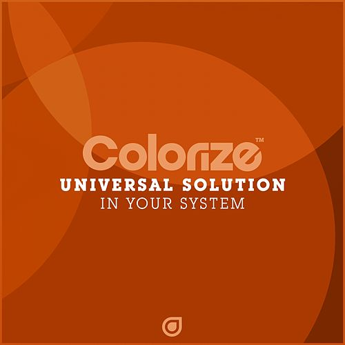 In Your System by Universal Solution