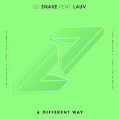 A Different Way by DJ Snake