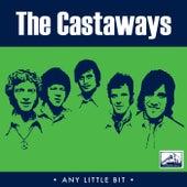 Any Little Bit von The Castaways