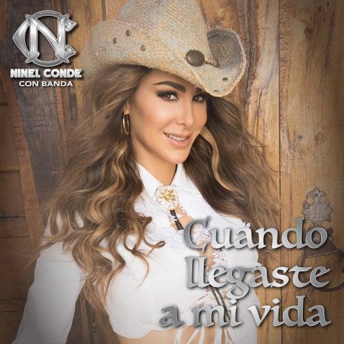 Cuando Llegaste a Mi Vida (Con Banda) by Ninel Conde