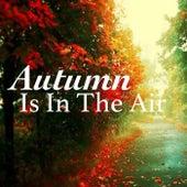 Autumn Is In The Air von Various Artists