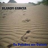 Tu Palabra Me Guiara by Blandy Garcia