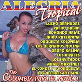 Alegria Tropical by Various Artists
