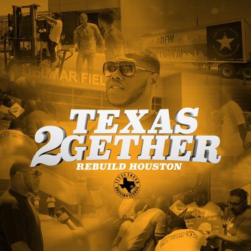 Texas 2Gether (feat. Paul Wall, Slim Thug, Lil' Keke, GT Garza, Lil' Flip, Mike D, Big Baby Flava, Nessacary, Yella Beezy, Trap Boy Freddy, DSR Tuck, Flexinfab, Dorrough, Lil Ronnie & Goldie The Gasman) by Z-Ro