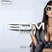 Bangin EDM, Vol. 2 - EP by Various Artists