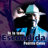Te la tenía escondida (Remasterizado) by Pedrito Calvo