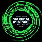 Maximal Minimal, Vol.12: Quality Pieces - EP by Various Artists
