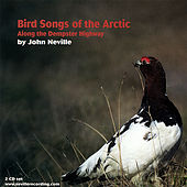 Bird Songs of the Arctic-Along the Dempster Highway by John Neville
