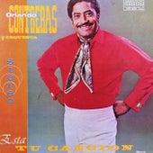 Esta Tu Cancion by Orlando Contreras