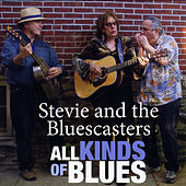 All Kinds of Blues by Stevie and the Bluescasters