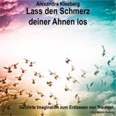 Lass den Schmerz deiner Ahnen los by Alexandra Kleeberg