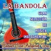 La Bandola by Manuel Jose Pulgarin Vera