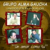 Un Amor Como Tu by Grupo Alma Gaucha